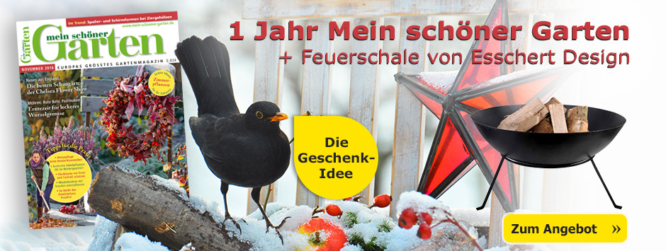 Die Geschenkidee: 1 Jahr Mein schöner Garten + Feuerschale von Esscher Design