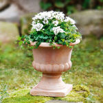 Terracotta-Pflanzer