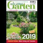 MSG Praxiskalender 2019
