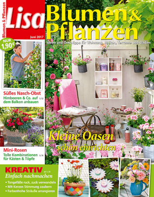 mein sch ner garten lisa blumen pflanzen. Black Bedroom Furniture Sets. Home Design Ideas