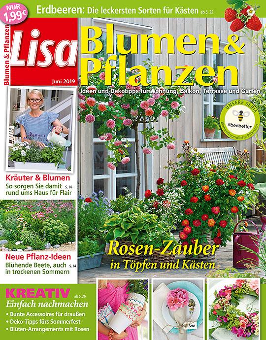 Lisa Blumen & Pflanzen GESCHENK-ABO