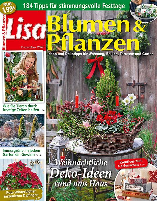 Lisa Blumen & Pflanzen MINI-ABO