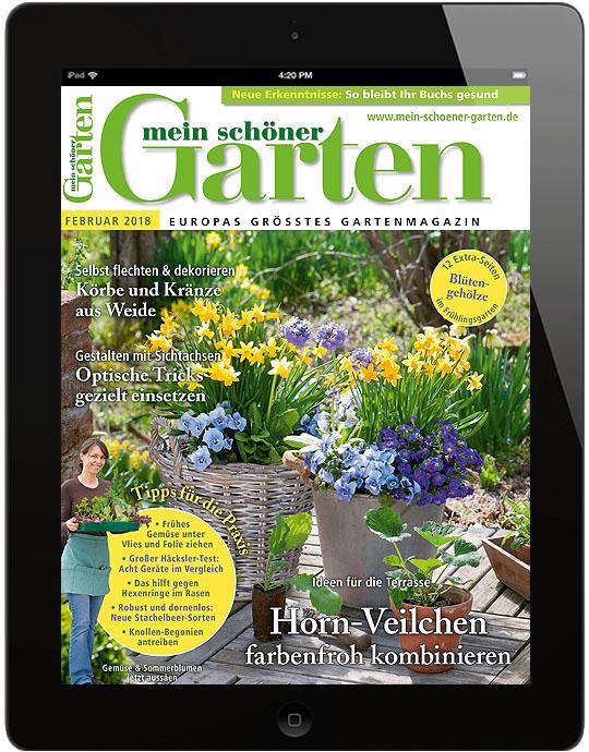 ✿ Mein schöner Garten | Mein schöner Garten ePaper
