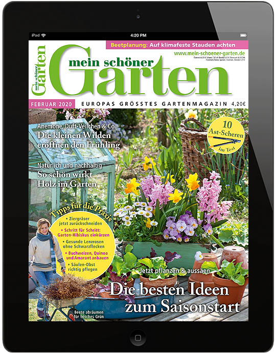 Mein schöner Garten ePaper