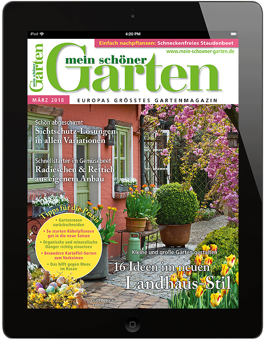 mein sch ner garten mein sch ner garten epaper. Black Bedroom Furniture Sets. Home Design Ideas