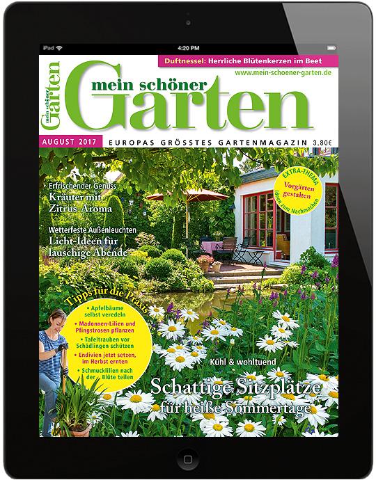 ✿ mein schöner garten | mein schöner garten epaper, Garten und bauen